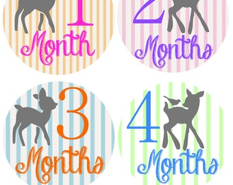 Month Sticker Baby Month Stickers Baby Monthly Stickers Monthly Baby Stickers Monthly Stickers Baby Stickers Photo Sticker Month by Month