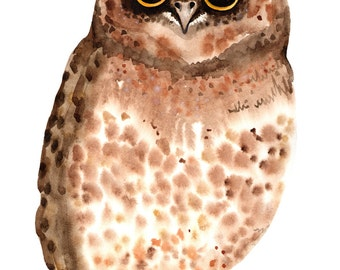 Owl Print Nursery Bird Print Watercolor Cute Owl Print Art Bird Wall Decor Owl Nursery Wall Decor Cute