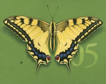 05 Swallowtail Butterfly