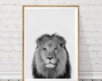 Lion Print, Safari Nursery Print, African Animals, Lion Nursery Printable, Kids Room Decor, Safari Wall Decor, Animal Poster