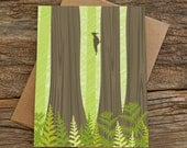 blank cards / redwood forest