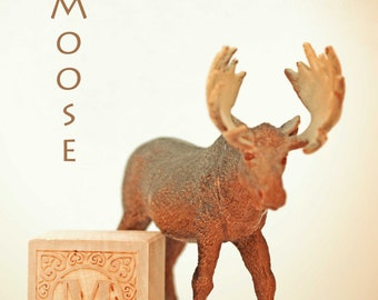 moose photo, nursery art, nursery decor, childs room decor, ABC art, toy photo,  child room art, letter art, alphabet photo, alphabet art
