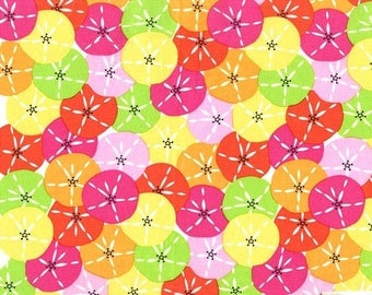 Dozens of Dollars Fabric - Michael Miller Fabric - Multi Beach Fabric - Michael Miller Discontinued - Bright Quilt Fabric - Sand Dollars