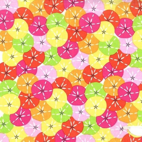 Dozens of Dollars Fabric - Michael Miller Fabric - Multi Beach ... : discontinued quilt fabric - Adamdwight.com