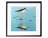 1 Bird Art PRINTs Shorebird watercolor painting, Nautical painting shorebird in art nature, Modern Family TV, Beach house art coastal bird