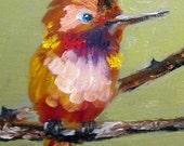 Hummingbird original bird oil painting Art by Delilah