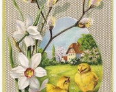 Chicks with Daffodils - Antique Easter Postcard - Easter Cards, Easter Postcards, Chicks, Chickens, Spring, Daffodils, Paper, Ephemera