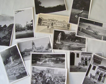 Vintage Argentina Black And White Photographs 1940 World Tour Buenos Aires South America Zoo