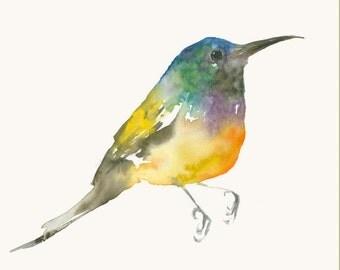 Very Colorful Bird Original Watercolor Painting