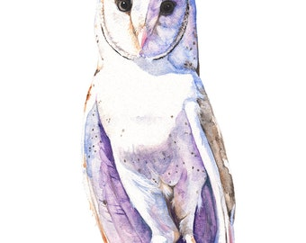 Barn Owl print of watercolor painting, 5 by 7 size, BO13116, Barn Owl watercolor painting, bird watercolor painting print
