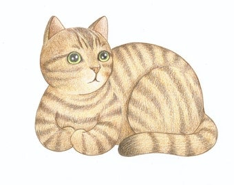 ON SALE 50% DISCOUNT, Brown Tabby Cat Pencil Drawing, Original Cat Drawing, Cute Kitty Cat Illustration, Gift for cat Lovers