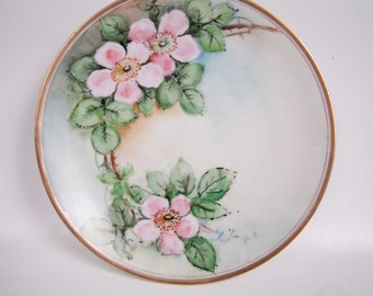 Antique Silesia Striegau Cabinet Plate Pink Wild Roses Floral German Porcelain Made Germany Gold Edge