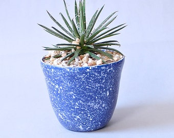 Blue Speckled Planter Made to Order