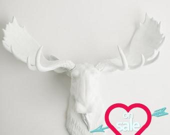Faux Taxidermy - White Moose Head - The Edmonton Moose Decor - Moose Antlers In White - Faux Taxidermied Moose Head by White Faux Taxidermy