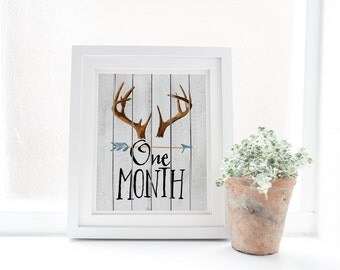 Printable Monthly Age Milestone Cards - Baby Month Signs - Rustic Woodland Antlers - Digital Download - Baby Keepsake - White Wood - SKU:489
