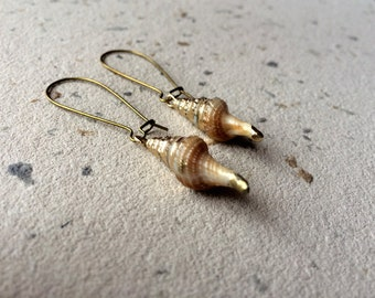 SALE! Shell dangle earrings - sea witch - mermaid earrings - ocean earrings - beach earrings - sea earrings - ocean - summer jewelry - siren