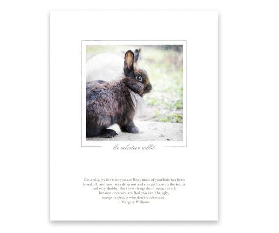 Unframed Photo Art Print. Fuzzy Bunny. Cute Rabbit. Farm Animal. Velveteen Rabbit Quote. Nursery Decor. Photography Gift for Nature Lovers.