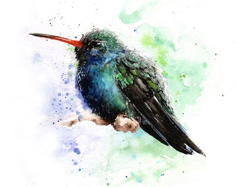 HUMMINGBIRD WATERCOLOR - bird painting, broad billed hummingbird art print, bird lover, bird wall art, abstract bird art, bird decor