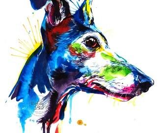Colorful Greyhound Art Print - Print of my Original Watercolor Painting