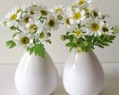 Mini Vases - Pair