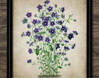 Purple & Blue Flowers Print - Flower Illustration - Botanical Flower Art - Digital Art - Printable Art - Single Print #54 - INSTANT DOWNLOAD