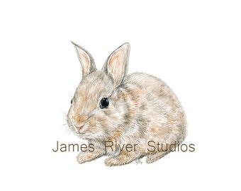 Bunny Rabbit Art Bunny Rabbit Print. Bunny Rabbit Watercolor Painting Little Rabbit Wall Art Small Bunny Painting Bunny Wall Decor Bunny Art