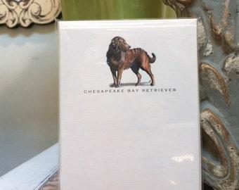 Chesapeake Bay Retriever Dog Note Card Set