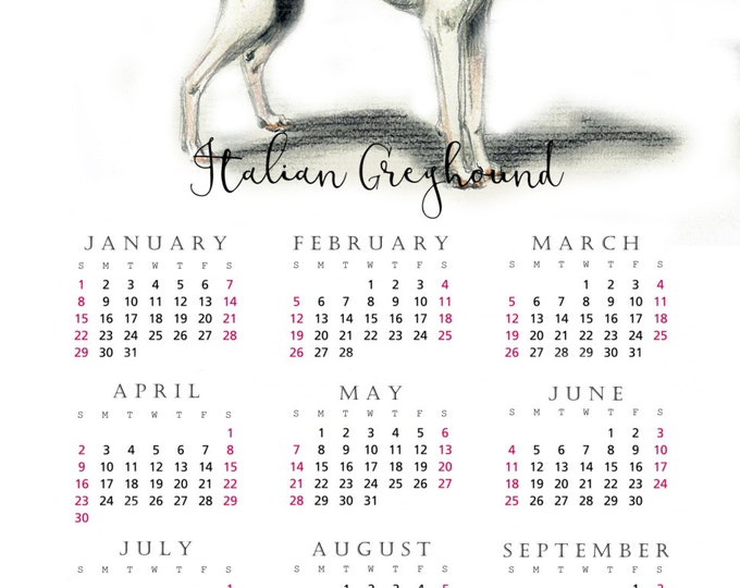 Italian Greyhound 2017 yearly calendar