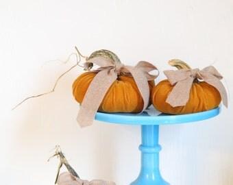 Plush Velvet Pumpkins with Real Stems - Set of 3
