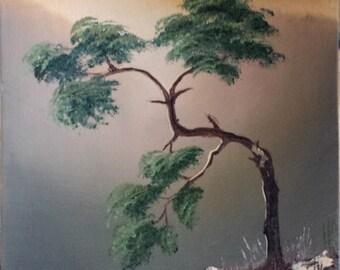 "Original landscape oil painting MOUNTAIN PINE 6x8"", beautiful tree."