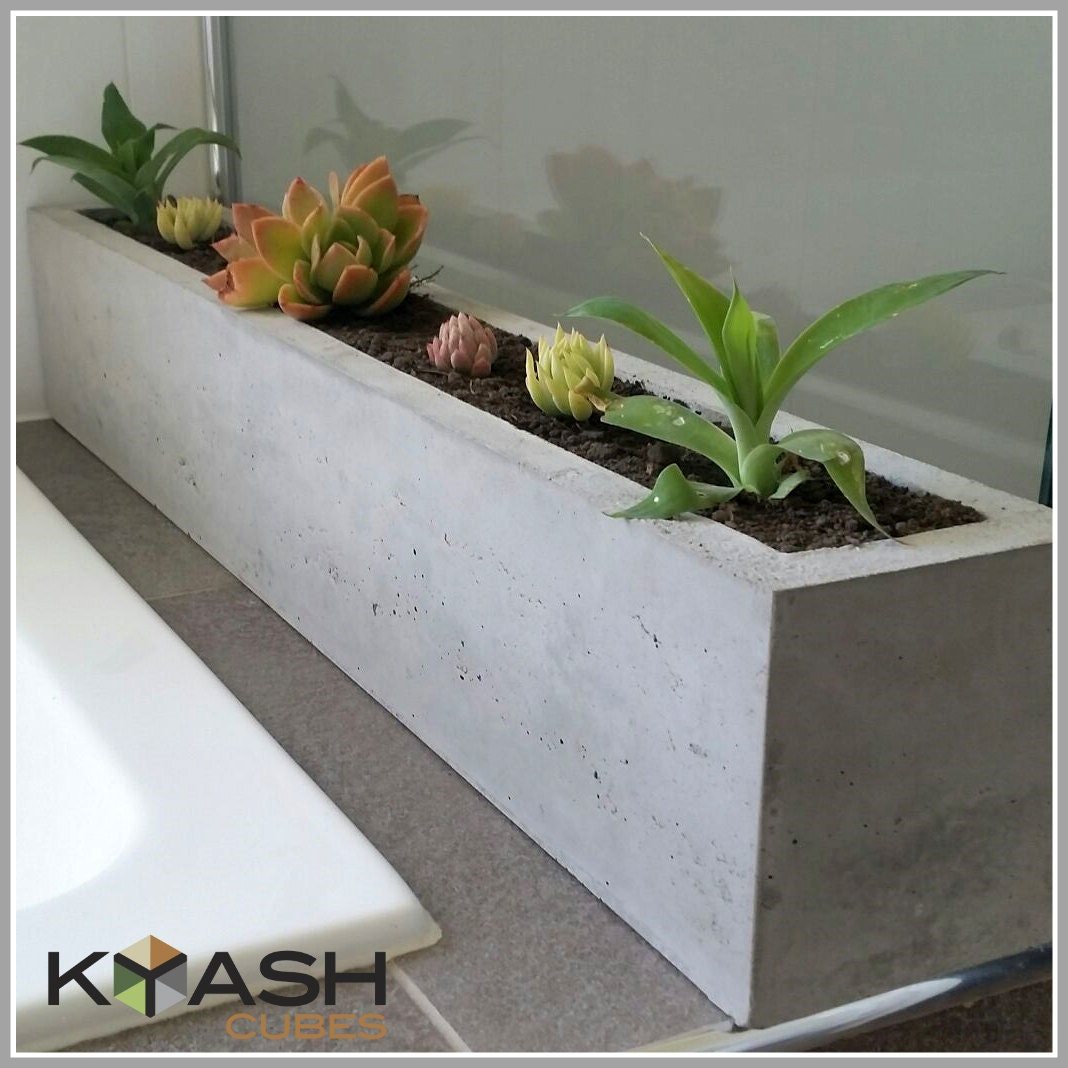 Polished Concrete Planter Large Rectangular 900mm Succulent