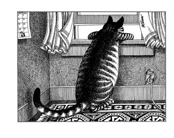 Kliban cat cartoon funny vintage print looking out of the window feline illustration 8.5 x 10.25 inches