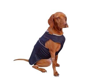 Vizsla / Pointer Winter Dog Coat - Warm Dog Jacket - Custom Dog Raincoat - Waterproof / Fleece coat - MADE TO ORDER