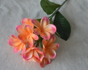Coral Pink Frangipani Plumerias Stems Natural Real Touch Flowers For Silk Bridal Bouquet Wedding Centerpieces