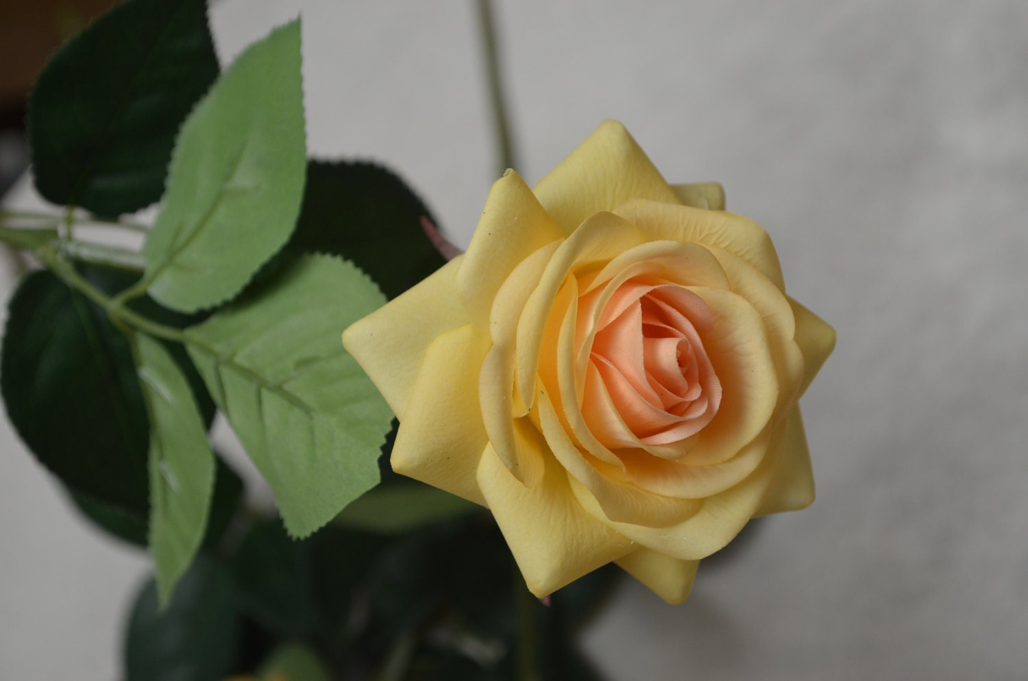 Yellow Champagne Real Touch Latex Roses Wedding Flowers For