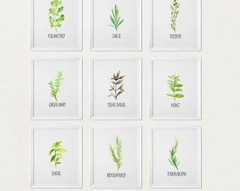 Herb Prints - Plant Print - Kitchen gallery Wall - Botanical illustration - Country Kitchen Decor - Gift for foodie - Kitchen Decor (1630-6)