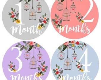 Baby Stickers Month Milestone Baby Stickers Monthly Stickers Bodysuit Monthly Stickers Month by Month Sticker Shower Gift