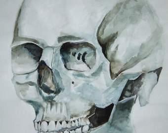 Hand Painted Watercolour Skull