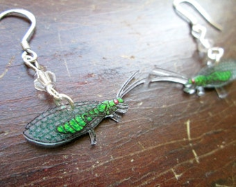 Green Lacewing Earrings - Hand Drawn Shrink Plastic and Sterling Silver
