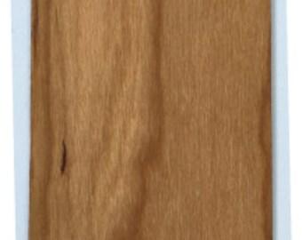 Dinosaur Wooden Bookmark