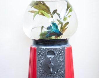 Fish tank etsy for Gumball fish tank