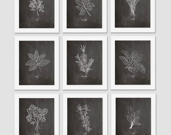 Herb Art Print Set Kitchen Decor Dining Room