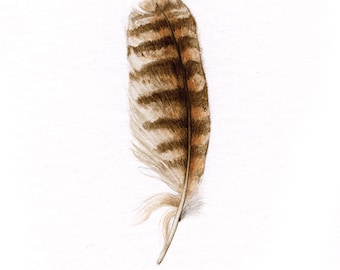 Great Horned Owl Feather – ORIGINAL painting