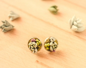succulent earrings stud earrings green earrings woodland jewelry nature jewelry