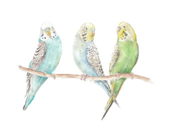 Parakeets Watercolor Limited Edition Print 8.5x11 Bird Painting Turquoise Yellow Green