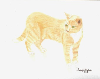 "Tabby Cat ""Ringo"" Watercolor Original Painting"