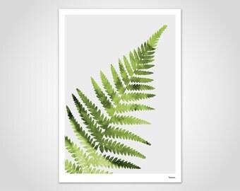 FERN - modern abstract art print, poster, contemporary wall art prints, plant, leaf, Botany, graphic, Scandinavian design, minimalist