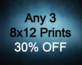 8x12 Prints - Choose any 3 ColorPopPhotoShop Fine Art Photographs