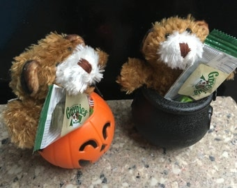Halloween Dog Treat and Toy