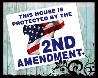 This house is protected by the second amendment - Vinyl Decal; Door decal